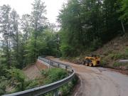 SP490 del Colle del Melogno - Località Franchella
