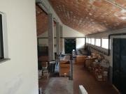 Ex Centro Faunistico