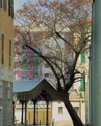 I vecchi treuggi (lavatoi) in calata, Porto di Savona (Ph: Franco Galatolo)