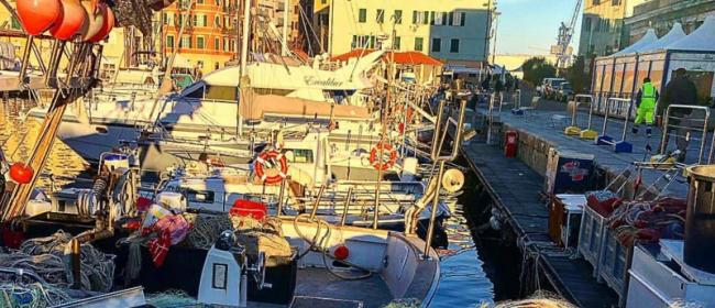 #sealife Darsena di Savona (Ph: Flavia Minetto)