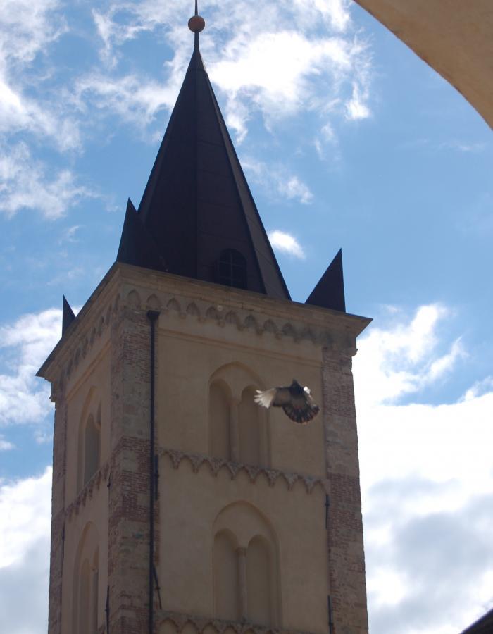 Campanile Santa Caterina, Finalborgo (Ph: Franco Chiara)